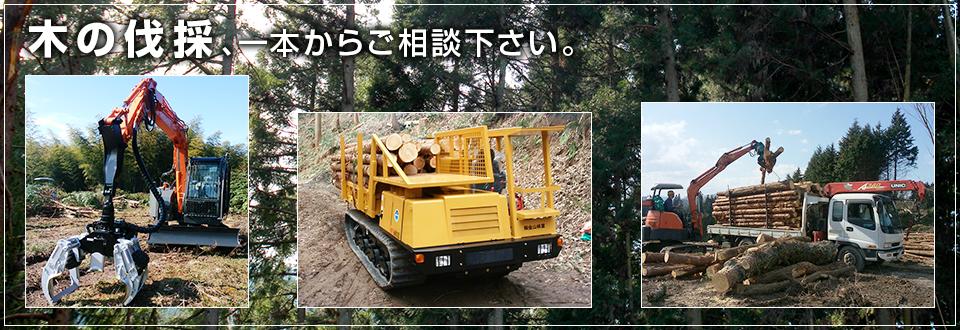 岡山、新見の林業、木1本からおまかせ!株式会社金山林業
